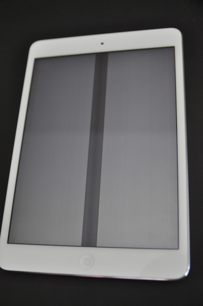 iPad Mini with Zebra-screen malfunction